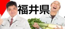 福井でコンテナ探し ドライコンテナ リーファーコンテナ 販売